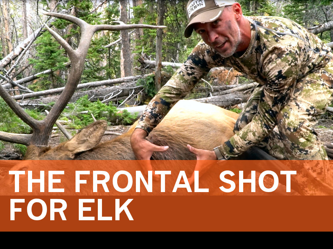 2019_Article 2_Frontal Shot for Elk