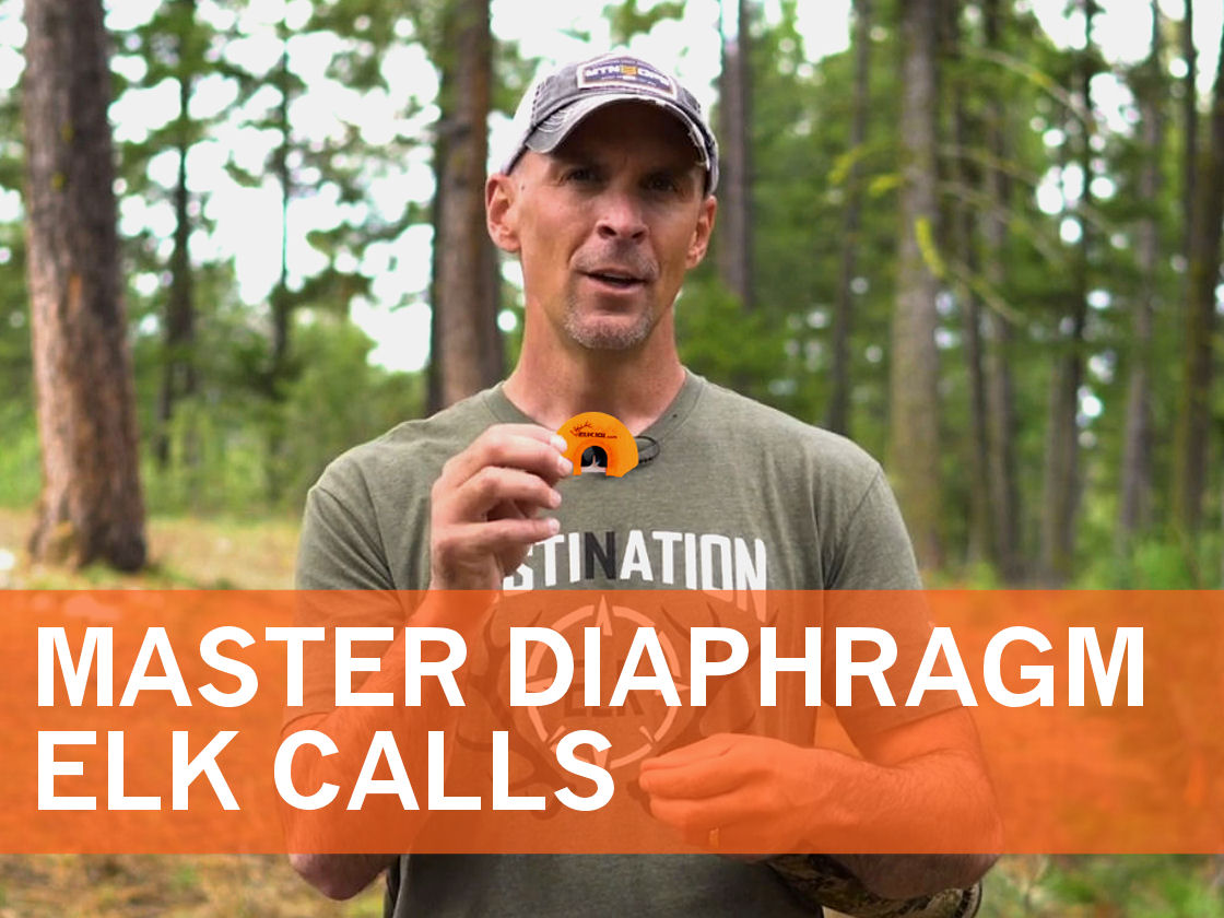 2019_Article 3_Master Diaphragm Elk Calls