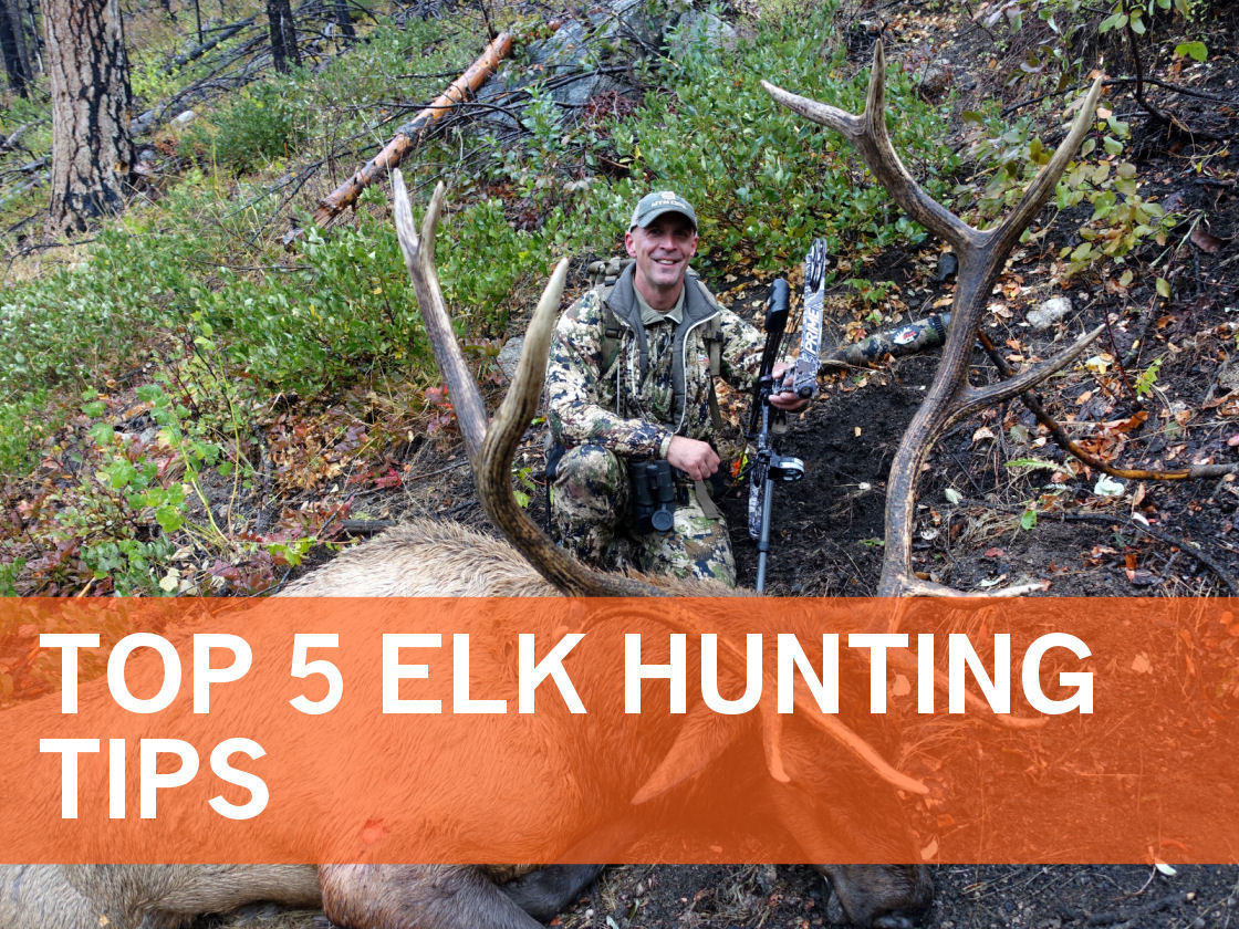 2019_Article 4_Top 5 Elk Hunting Tips