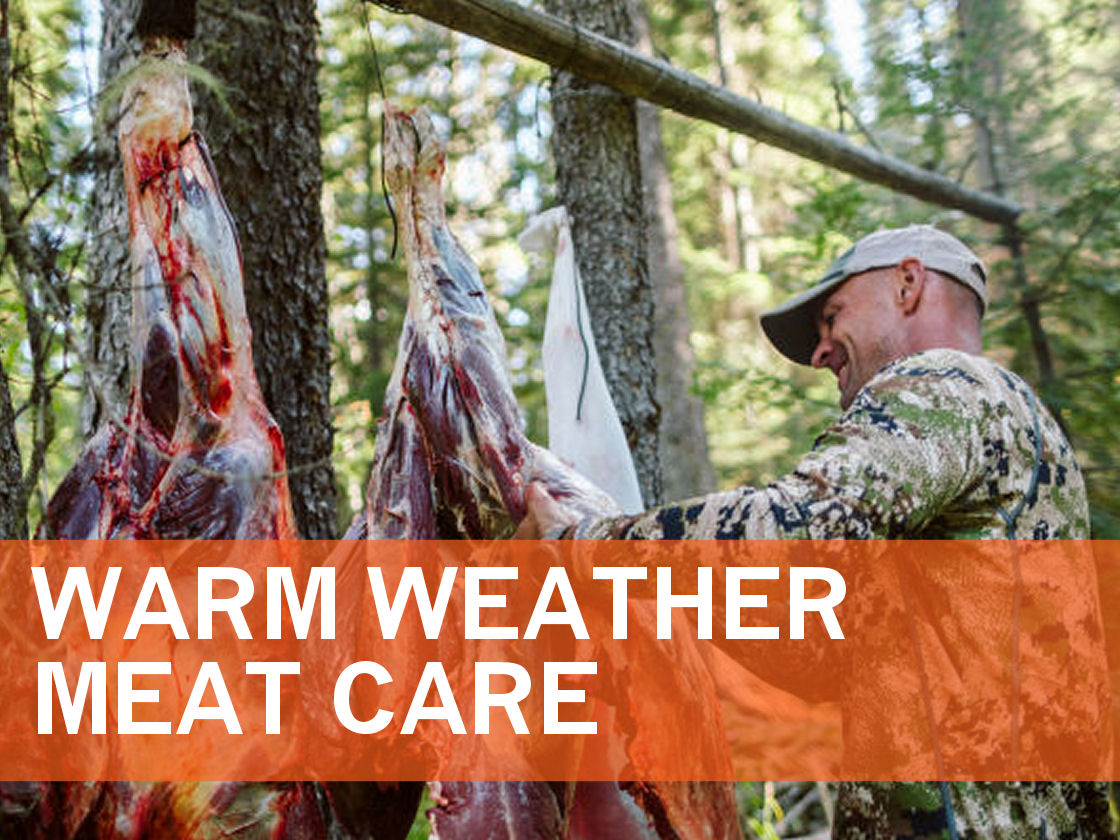 2019_Article 9_Warm Weather Meat Care