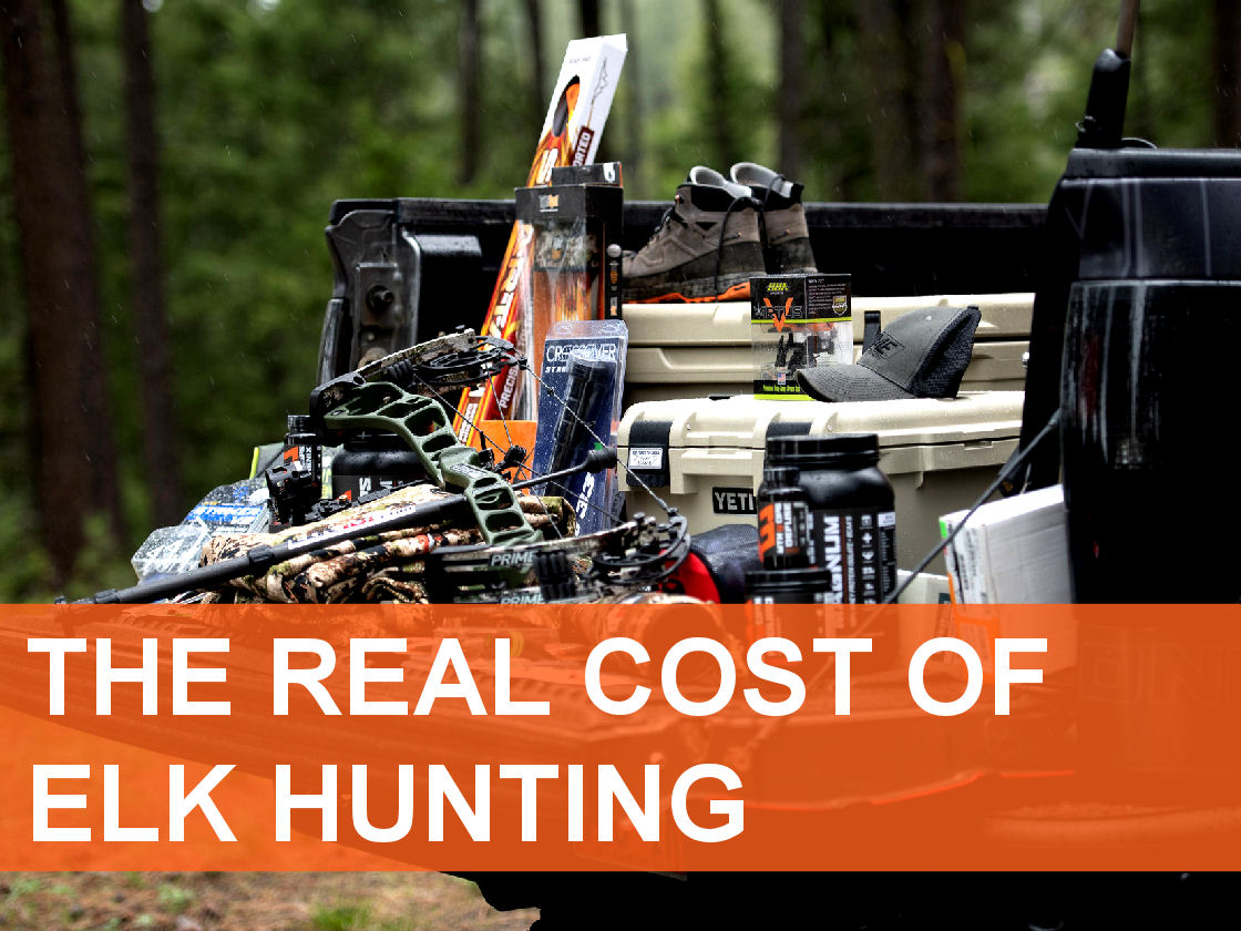 2020_Article 2_Elk Hunting on a Budget - What Does It Cost